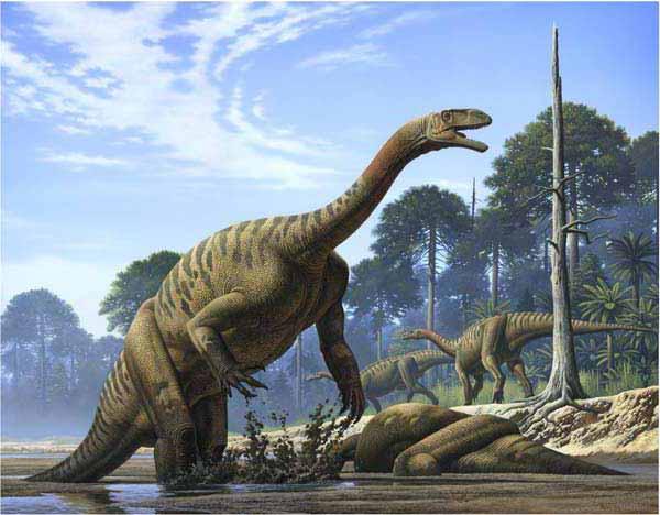 Plateossauro